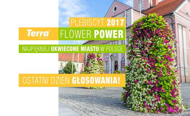 Plebiscyt Terra Flower Power 2017 – kto wygra?