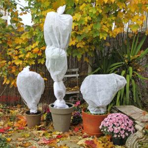 Jesień w ogrodzie - jakie donice wybrać?