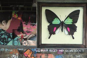 motyle murale street art (17) mantra