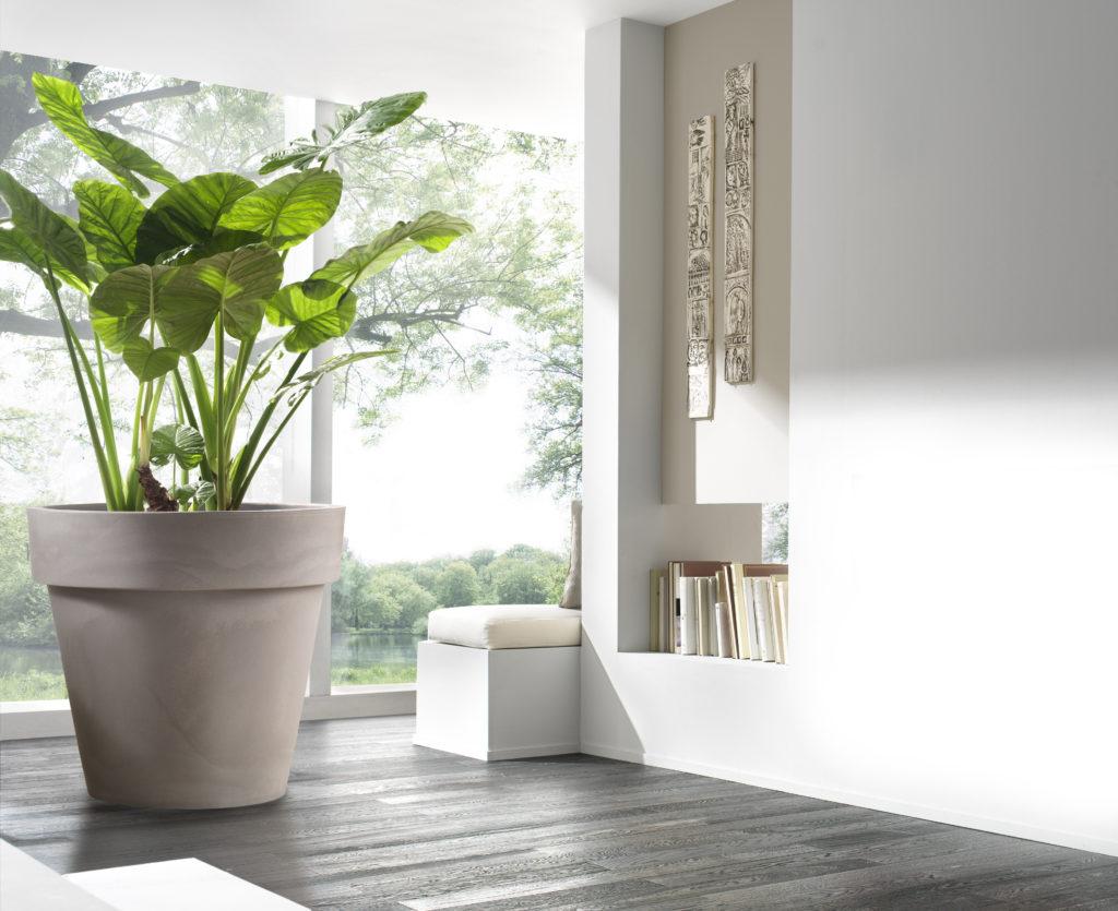 donice-polietylenowe-przyszloscia-ogrodnictwa-jakie-donice-wybrac-do-swojego-domu/