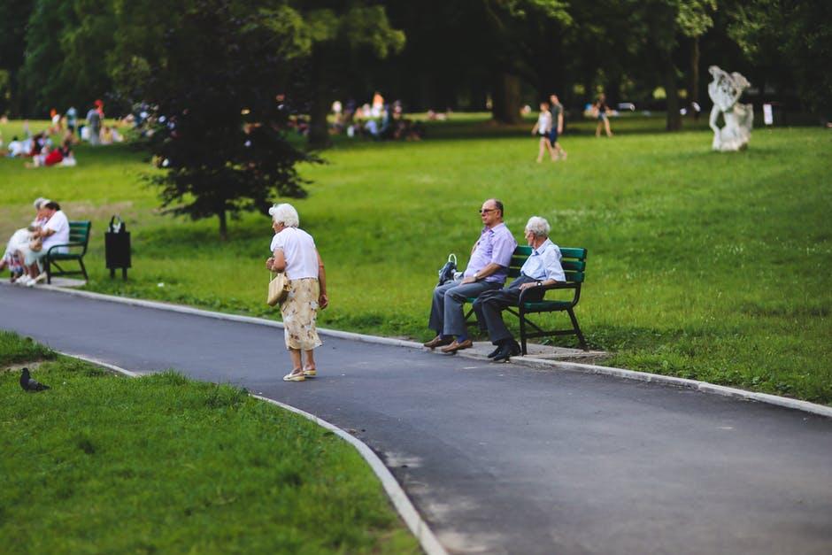 rola parków wprzestrzeni miejskiej (3)