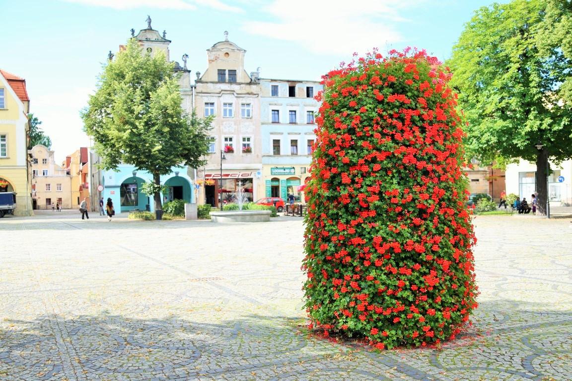 ukwiecenie kamiennej góry wieże kwiatowe terra
