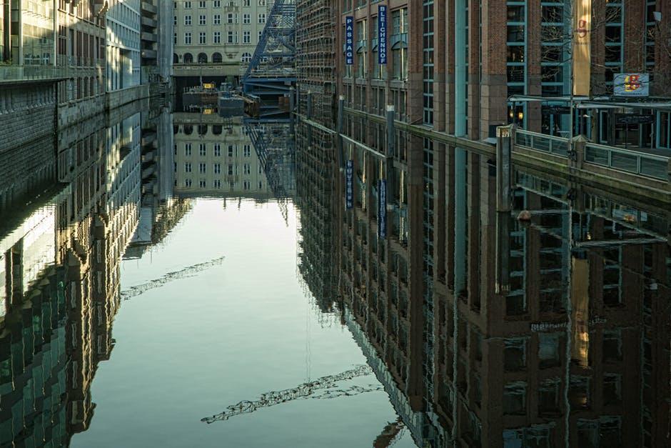 Hamburg walczy o powrót do natury (2)