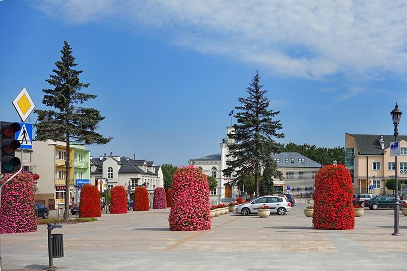ciechanów ukwiecenie wieże kwiatowe terra (2)
