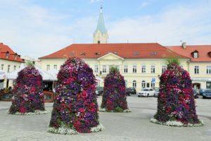 wieże kwiatowe terra oświęcim ukwiecenie miasta (2)