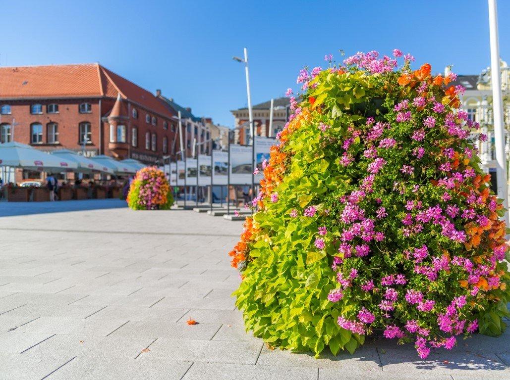 wieże kwiatowe kwietniki terra hydrogel zieleń miejska