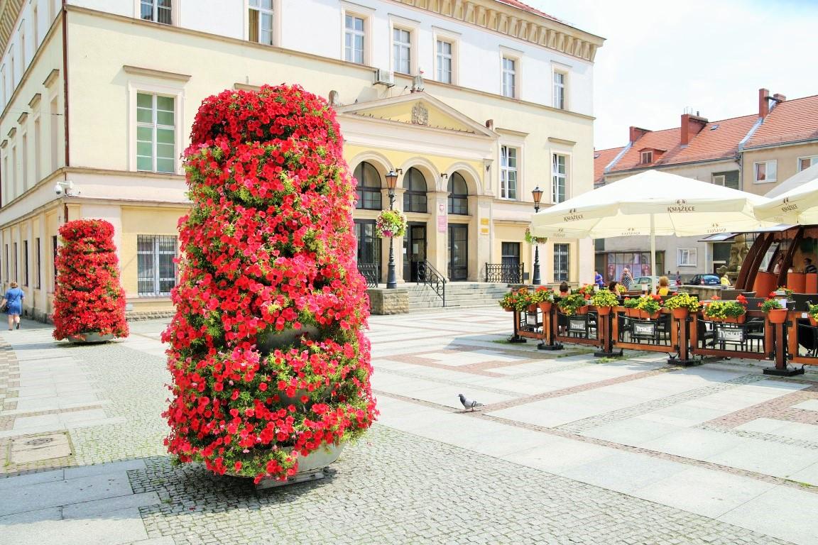 wieże kwiatowe terra złotoryja