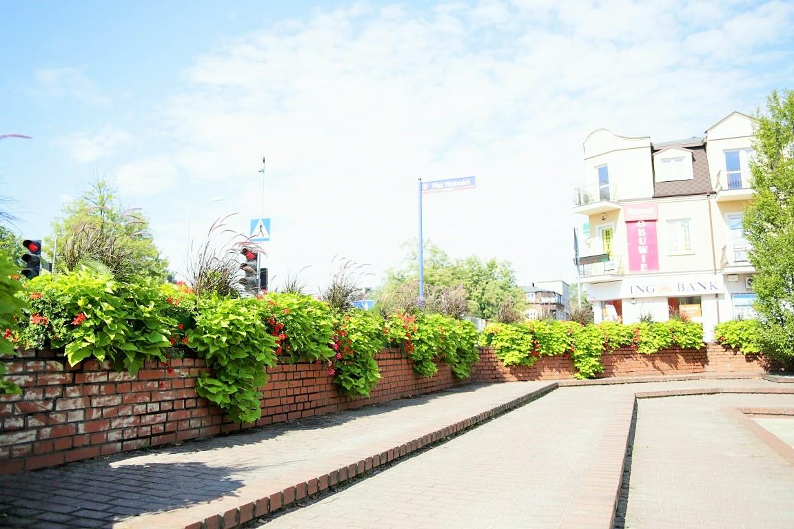 miejskie skrzynki kwiatowe