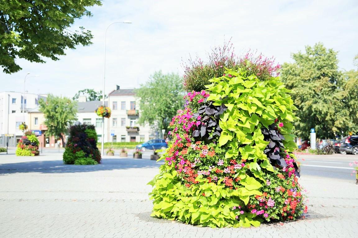 Terra ukwiecenie grodziska mazowieckiego skrzynie kwiatowe wieże kwiatowe (2)