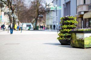 ażurowe dekoracje zielona góra terra easter wieże kwiatowe bratki wielkanoc