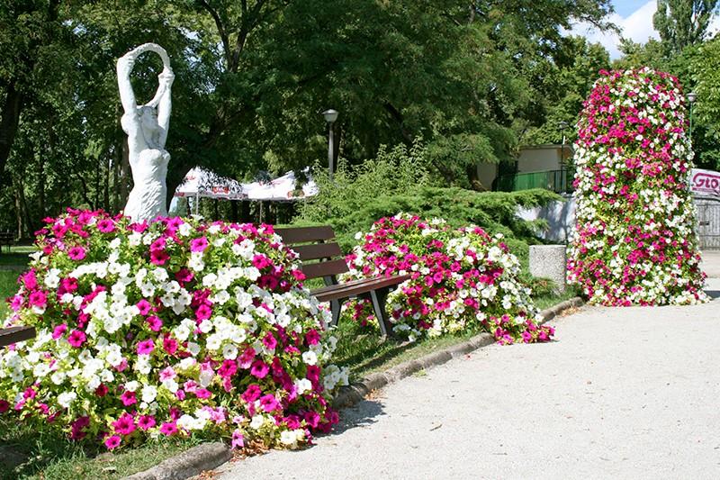 ukwiecenie wągrowca wieże kwiatowe terra (3)