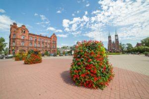 wieże kwiatowe terra ukwiecenie miasta 1200