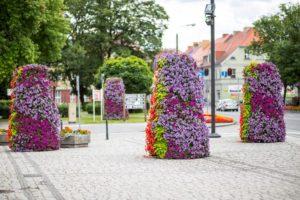 wieże kwiatowe terra ukwiecenie miasta kwietniki (1) Międzyrzecz