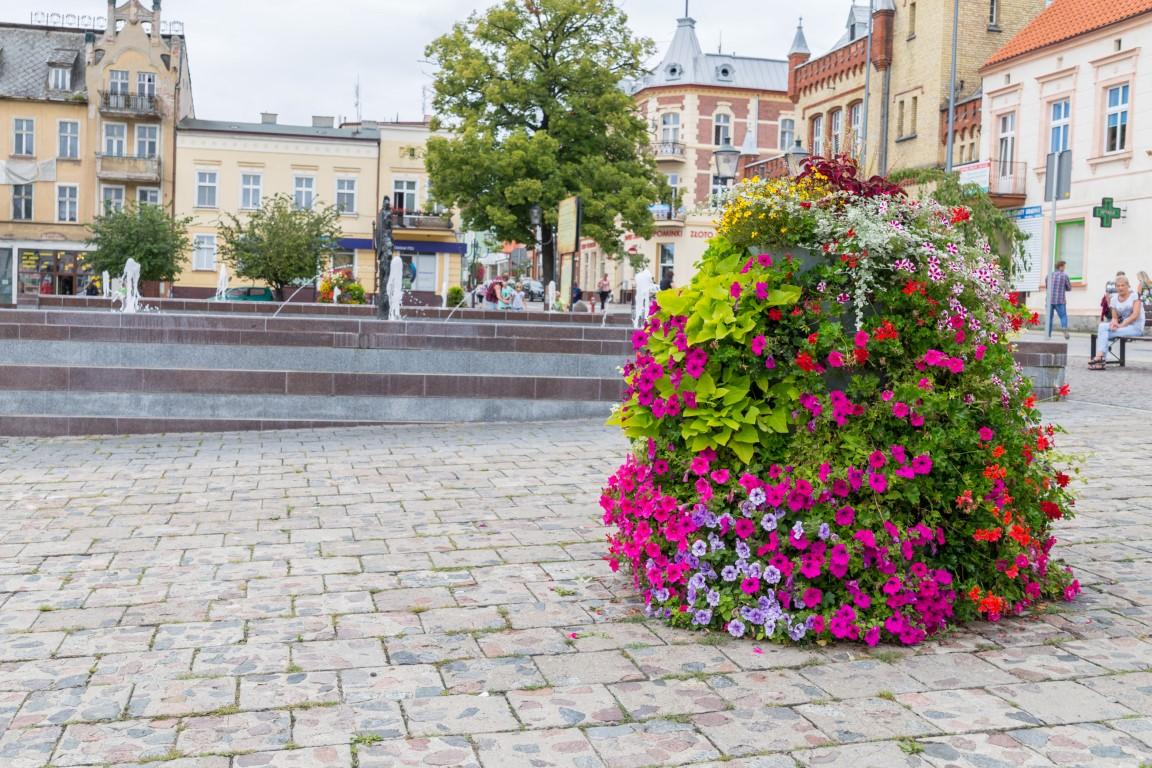 wieże kwiatowe terra ukwiecenie miasta kwietniki (2) świecie