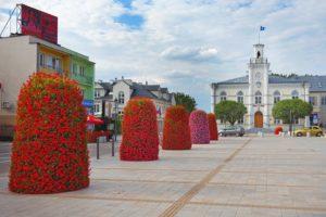 wieże kwiatowe terra ukwiecenie miasta kwietniki (7) Ciechanów