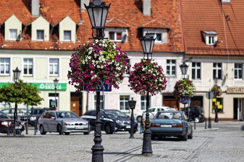 Kompleksowe Ukwiecenie miasta – jak to zrobiono w Miliczu?