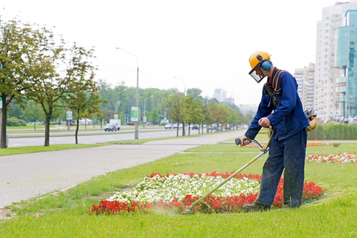 zieleń naosiedlach kwietniki trawniki