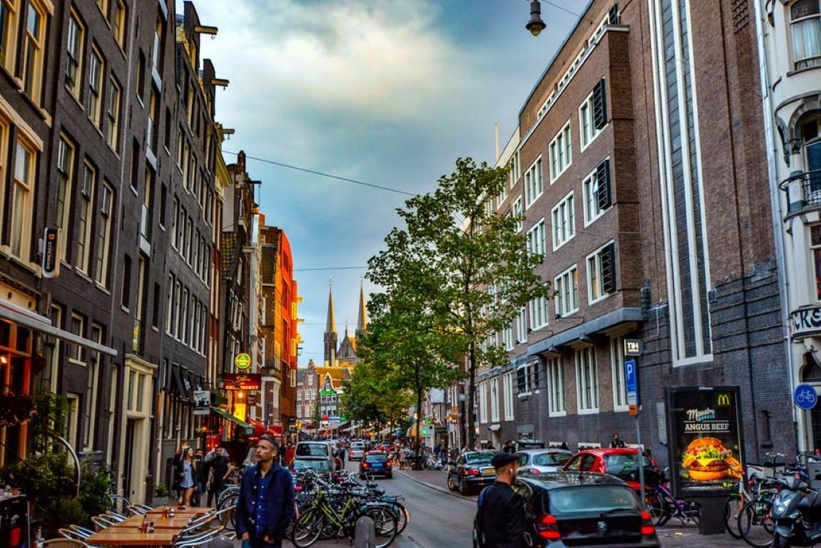 Dlaczego-miasta-potrzebują-drzew