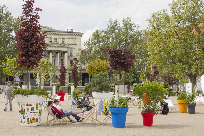 Nie tylko dekoracja! O roli drzew w miastach