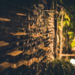 3 sposoby naklimatyczne wieczory wogrodzie