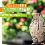 Plebiscyt Terra Flower Power – wspólnie wybierzmy najpiękniej ukwiecone miasto wPolsce!