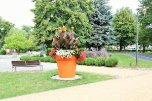 donice gianto lubin park 1