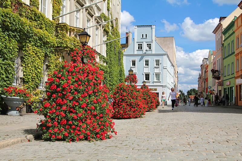 Ukwiecenie miasta – tajemnica sukcesu ze Szprotawy