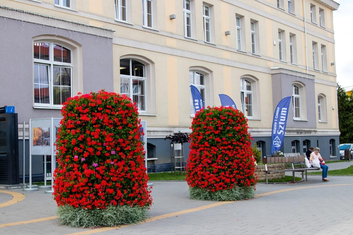 donice miejskie gianto terraform.pl