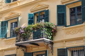 Wybierz rośliny idealne na balkon