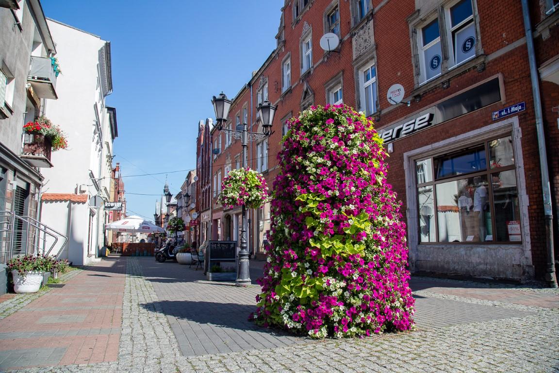 ukwiecenie Świebodzina, kwietniki miejskie, zieleń miejska
