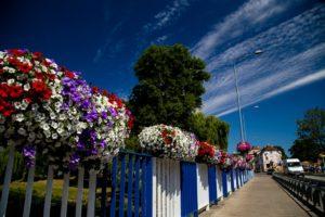 Letnie ukwiecenie miasta – najciekawsze pomysły