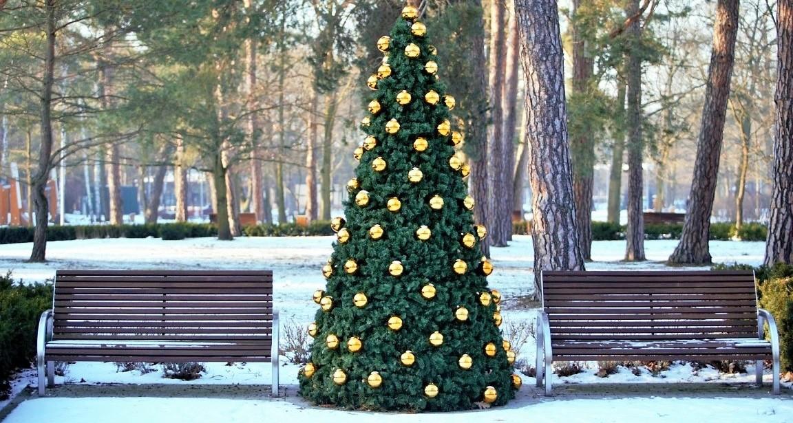 wieże kwiatowe nakładki świąteczne terra christmas