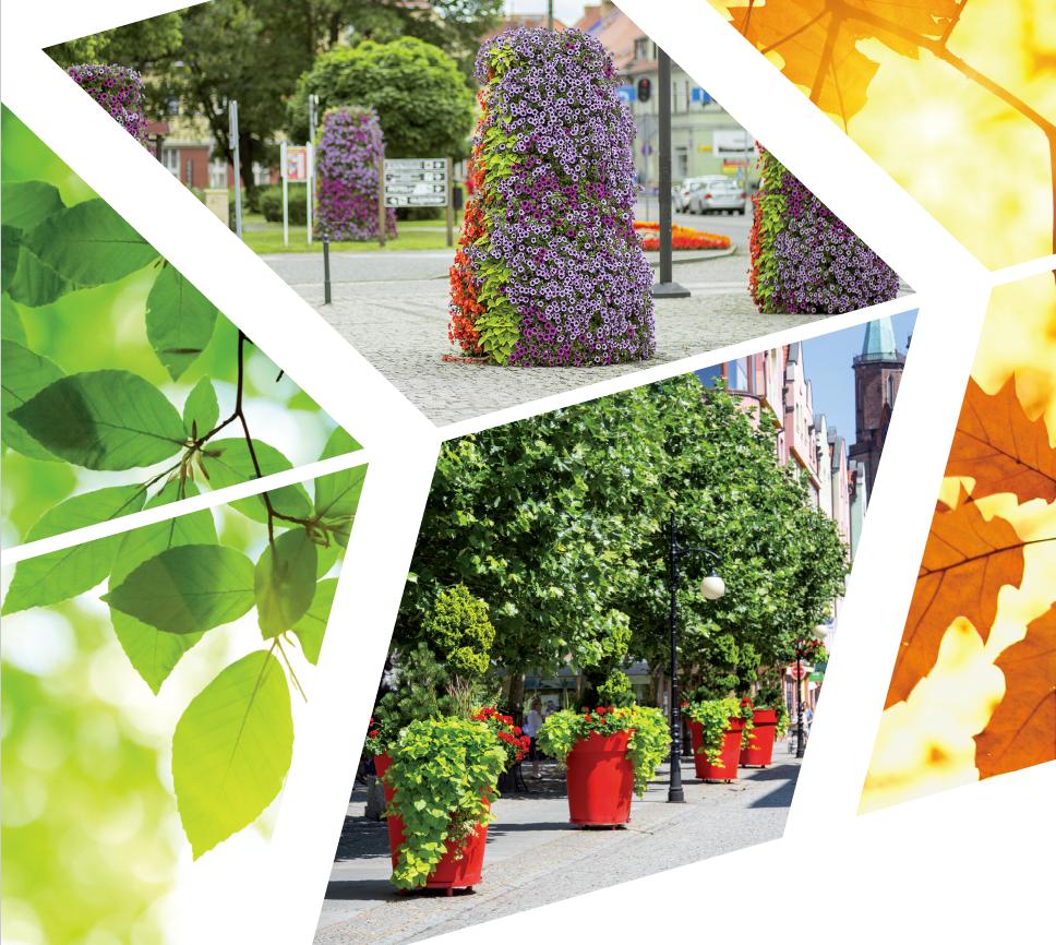 abe7ec0f53f51 Wiosna z bratkami, lato możliwości, jesień kolorów, zima w szczególnym  nastroju – jednym słowem cały rok atrakcyjnych dekoracji we wspólnych  przestrzeniach.