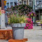 wielkie donice Gianto wieże kwiatowe terra ukwiecenie miasta września 24
