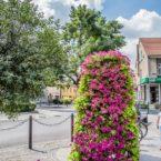 wielkie donice Gianto wieże kwiatowe terra ukwiecenie miasta września 45