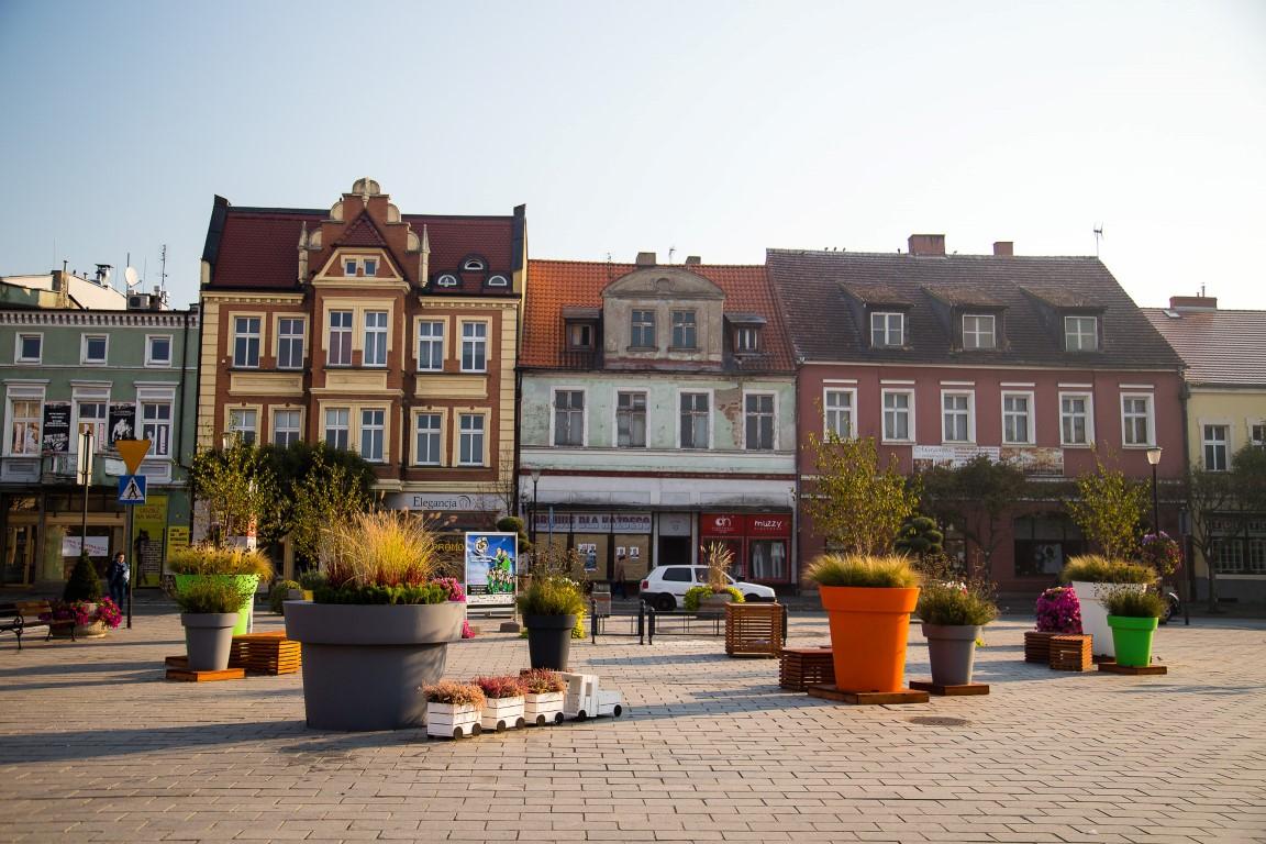 donice miejskie terraform.pl