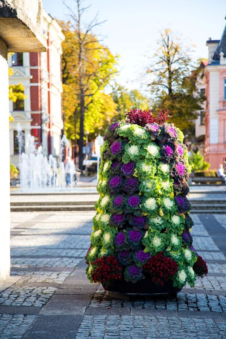jesienne wieże kwiatowe ukwiecenie miasta jesienią kwietniki na jesień 5