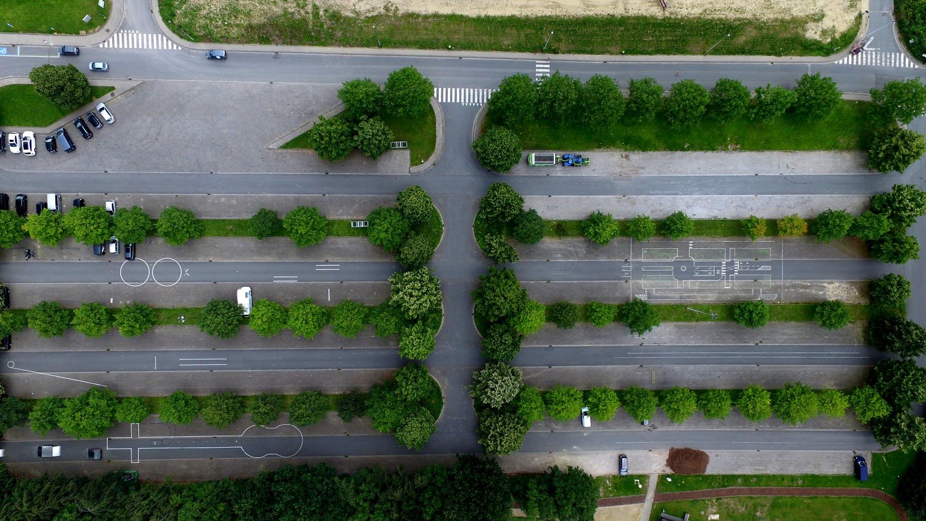 zieleń miejska parking