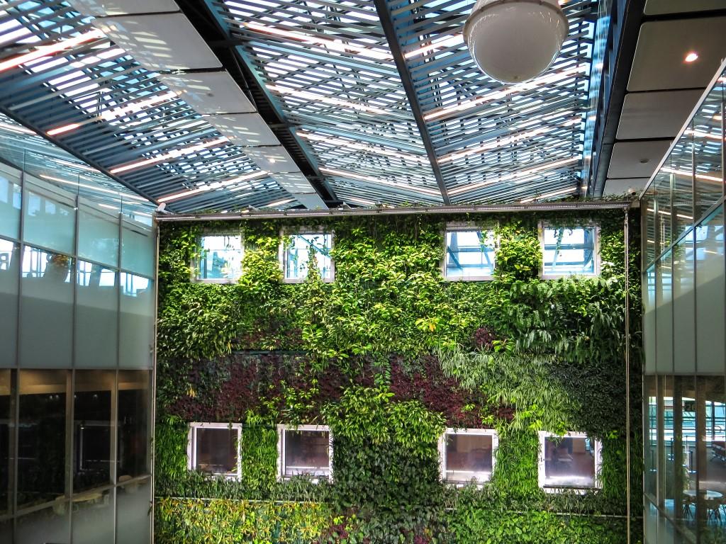 zieleń w galeriach handlowych