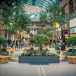 Dlaczego galerie handlowe potrzebują zieleni?