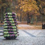 Jesiennie wŚwinoujściu