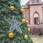 Święta wGdańsku – miejska choinka przyjazna środowisku