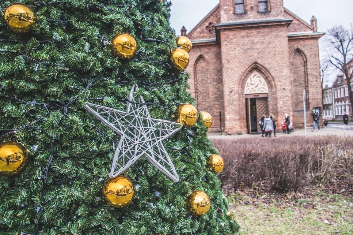Święta w Gdańsku – miejska choinka przyjazna środowisku