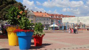 W kontraście siła! Kolorowe donice w Łomży