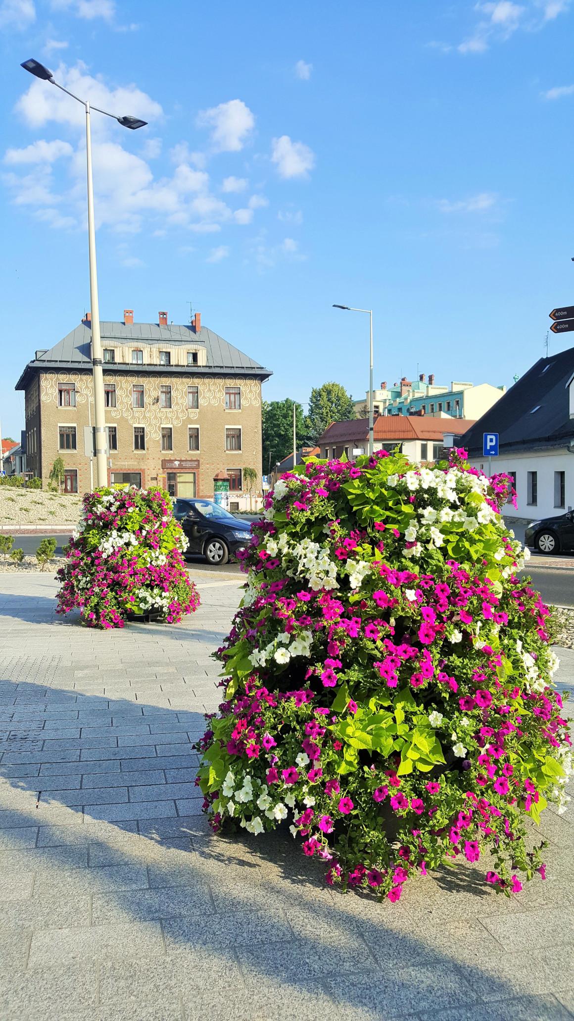 wieże kwiatowe kwietniki miejskie skrzynki kwiatowe terra group bielsko biała 11