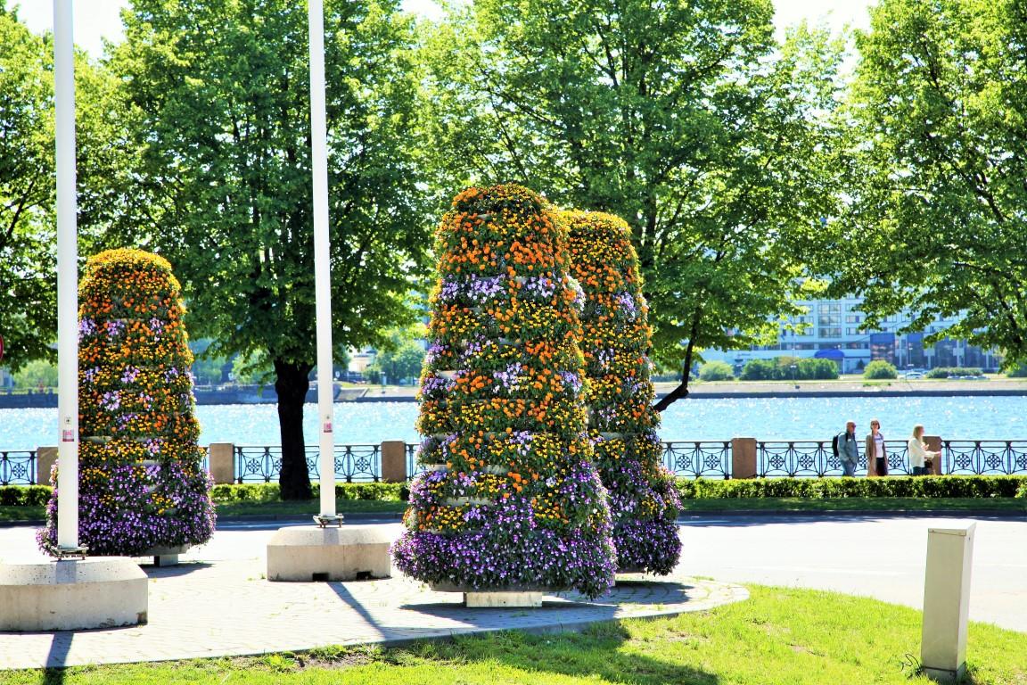 wieże kwiatowe kwietniki miejskie terra ryga 1