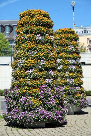 wieże kwiatowe kwietniki miejskie terra ryga 6