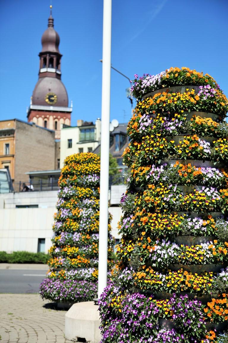 wieże kwiatowe kwietniki miejskie terra ryga 9