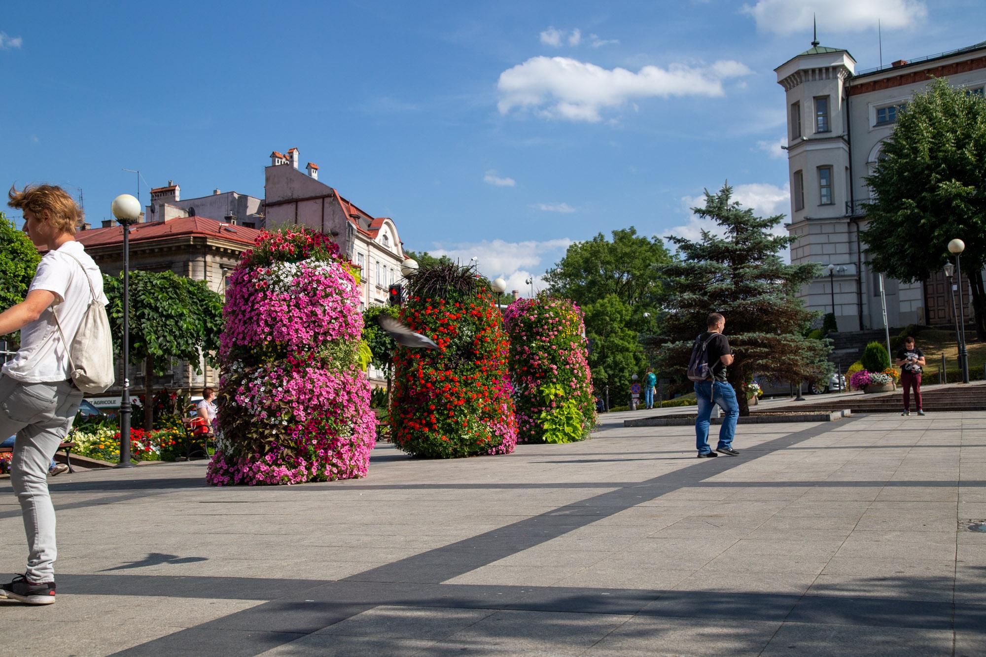 terra flower power, plebiscyt inspirowanych naturą, najpiękniej ukwiecone miasto w polsce, wieże kwiatowe, kwietniki