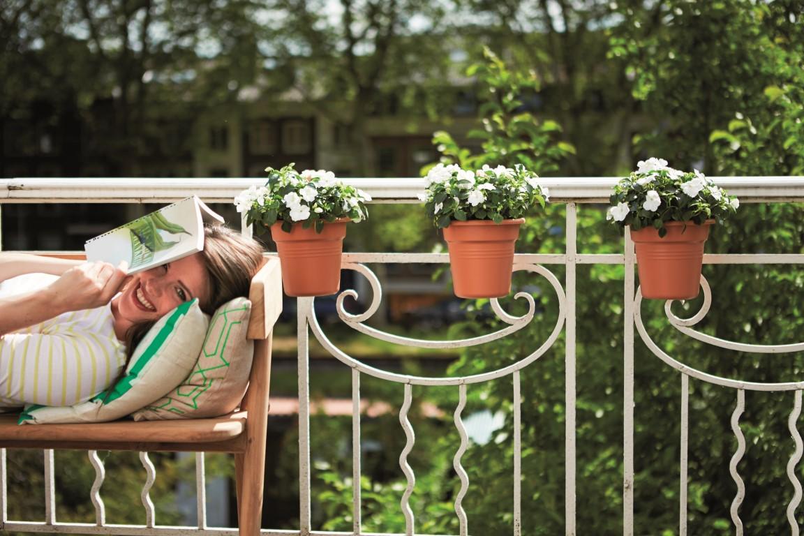 Jak podlewać kwiaty balkonowe?